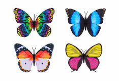 Fondo blanco aislado colorido de diversa mariposa Foto de archivo
