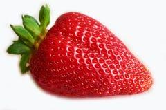 Fondo blanco aislado fresa roja grande de la baya Fotografía de archivo libre de regalías