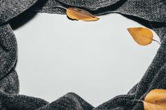 Fondo blanco, alrededor del cual una bufanda gris y hojas del amarillo fotos de archivo