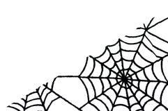 Fondo blanco con el espacio de la copia y web de araña en abajo a la derecha Fotos de archivo libres de regalías
