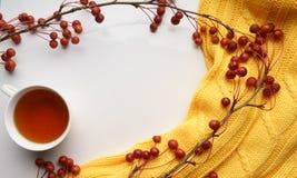 Fondo blanco con las ramas con las pequeñas manzanas y suéter amarillo y una taza de té, primer, visión superior Fotos de archivo