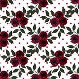 Fondo blanco rojo inconsútil del modelo de flores s Fotografía de archivo libre de regalías