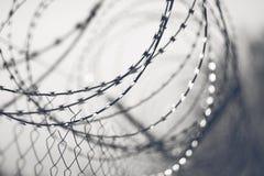 Fondo blanco y negro con alambre de púas agudo imagen de archivo