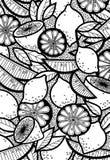 Fondo blanco y negro de limones, limón del garabato Imagen de archivo libre de regalías