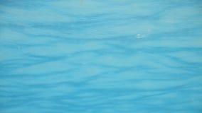 Fondo blu dell'acqua di colore archivi video