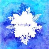 Fondo blu dell'acquerello con le foglie bianche Fotografia Stock