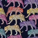 Fondo blu scuro senza cuciture del modello multicolore del leopardo Immagini Stock Libere da Diritti