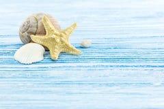 Fondo blu stagionato dei bordi di legno con le stelle marine e il seashe Fotografia Stock