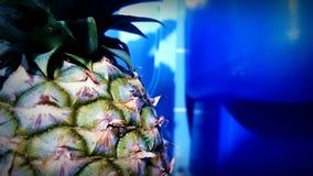 Fondo blu tropicale di pinya fresco dell'ananas della frutta Fotografia Stock