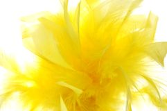 Fondo borroso amarillo fotos de archivo