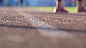 Fondo borroso de la gente que camina en estadio Slowmo aficionado de la cantidad del deporte