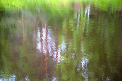 Fondo borroso de las reflexiones del agua de árboles y del cielo Imagen de archivo