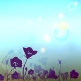 Fondo borroso floral con la llamarada de la luz del sol Foto de archivo