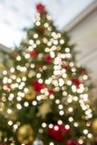 Fondo borroso perspectiva del árbol de navidad fotos de archivo