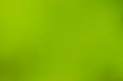 Fondo borroso verde Imagen de archivo