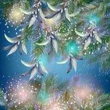 Fondo brillante de la Navidad 9 y del Año Nuevo con el árbol de la piel ilustración del vector