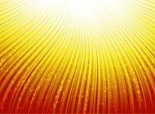 Fondo brillante del vector de la sol Imagen de archivo libre de regalías