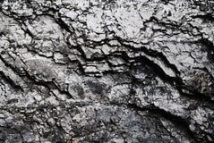Fondo brillante negro del carbón Imagenes de archivo
