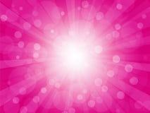 Fondo brillantemente rosa con i raggi Immagini Stock