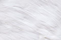 Fondo calcinato bianco rustico della parete Ecologia, concetto di eco fotografie stock libere da diritti