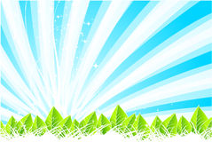 Fondo caliente del verano ilustración del vector