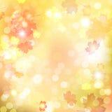 Fondo caliente suave borroso del otoño Imágenes de archivo libres de regalías