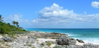 Fondo caraibico della spiaggia con le rocce della lava Immagini Stock Libere da Diritti