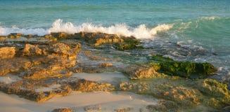 Fondo caraibico della spiaggia con le rocce della lava Fotografie Stock