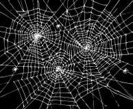Fondo CCCVII di web di Halloween Immagine Stock