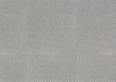Fondo celular abstracto Foto de archivo libre de regalías
