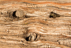 Fondo cercano para arriba de corteza del tronco del cedro Imagenes de archivo