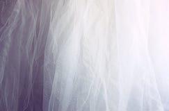 Fondo chiffon d'annata di struttura di Tulle Arco della stella blu con il nastro blu (involucro di regalo) su priorità bassa bian immagini stock libere da diritti