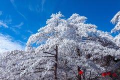 Fondo chino del Año Nuevo en el parque nacional de Huangshan Imagen de archivo libre de regalías