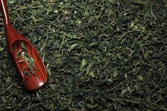 Fondo chino verde del té nadie fotografía de archivo libre de regalías