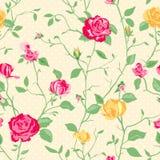 Fondo color de rosa de la elegancia lamentable Foto de archivo libre de regalías