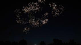 Fondo coloreado extracto del fuego artificial Concepto de la celebración y del aniversario metrajes