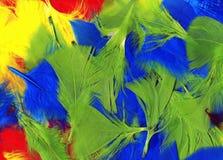 Fondo coloreado multi de las plumas Imagen de archivo libre de regalías