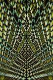 Fondo colorido abstracto de la licencia de la palma Imágenes de archivo libres de regalías