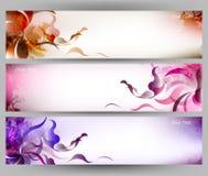 Fondo colorido abstracto del vector de la mariposa y de la flor Foto de archivo libre de regalías