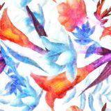 Fondo colorido Bud Beautiful For Decoration Design T del modelo Imagen de archivo libre de regalías