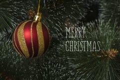 Fondo colorido con el árbol de navidad adornado Imagenes de archivo