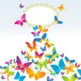 Fondo colorido con la mariposa. Imágenes de archivo libres de regalías