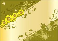 Fondo colorido con las flores Imagen de archivo libre de regalías