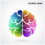 Fondo colorido creativo del concepto de la idea del cerebro Fotografía de archivo libre de regalías