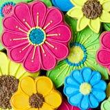 Fondo colorido de la galleta Fotografía de archivo libre de regalías