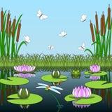 Fondo colorido de la historieta con los habitantes y las plantas de la charca Imagenes de archivo
