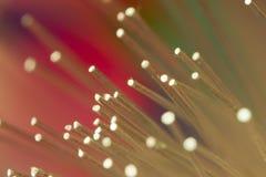 Fondo colorido de la tecnología de la fibra óptica Imagenes de archivo