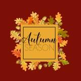 Fondo colorido de las hojas de otoño Diseño floral de la bandera Imágenes de archivo libres de regalías