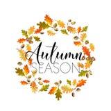 Fondo colorido de las hojas de otoño Diseño floral de la bandera Fotografía de archivo