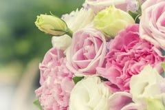 Fondo colorido de las rosas de la multiplicidad, profundidad del campo baja fotografía de archivo